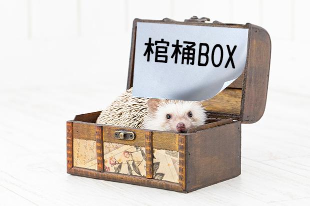 棺桶BOX