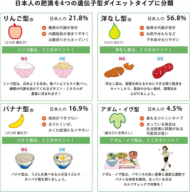 日本人の肥満タイプ