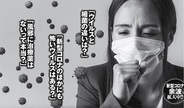 細菌とウイルス