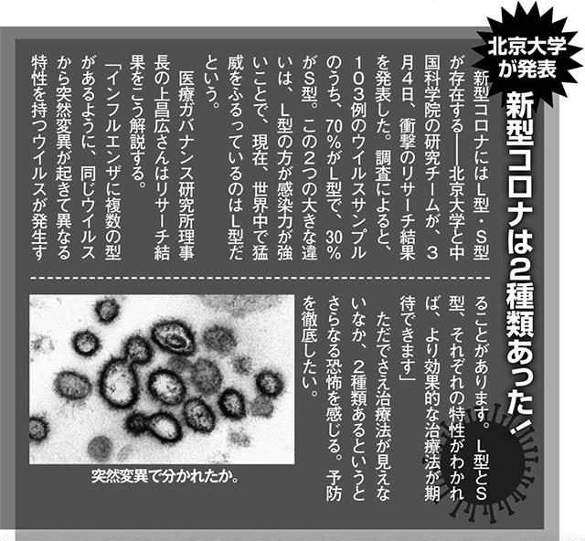 北京大学が発表。新型コロナには2種類あった!  新型コロナにはL型・S型が存在する——北京大学と中国科学院の研究チームが、3月4日、衝撃のリサーチ結果を発表した。  調査によると、103例のウイルスサンプルのうち、70%がL型で、30%がS型。 この2つの大きな違いは、L型の方が感染力が強いことで、現在、世界中で猛威をふるっているのはL型だという。  医療ガバナンス研究所理事長の上昌広さんはリサーチ結果をこう解説する。 「インフルェンザに複数の型があるように、同じウイルスから突然変異が起きて異なる特性を持つウイルスが発生することがあります。L型とS型、それぞれの特性がわかれば、より効果的な治療法が期待できます」  ただでさえ治療法が見えないなか、2種類あるというとさらなる恐怖を感じる。予防を徹底したい。