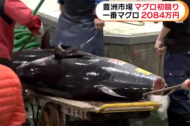 豊洲市場 マグロ初競り 一番マグロ2084万円