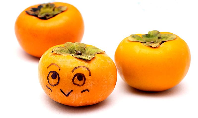 柿の日 正岡子規